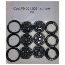 P9.001.002 Комплект клапанов насоса PM (6 шт.)