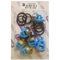 069867973 KIT 123 Клапанный набор (TM/RAL)